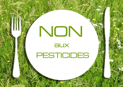 Agriculture : sans pesticides mais avec de bons rendements