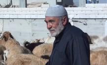 nov 16_ALN_courts palestine_ BD