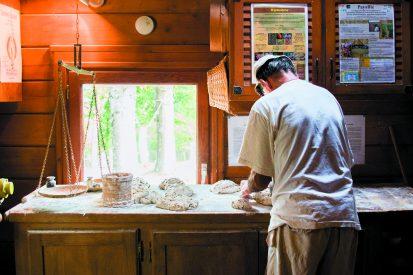 ECOLLYWOODDaniel le boulanger_web
